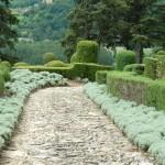 Необычные формы сада