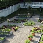 Правильный огород