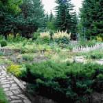 Варианты садов для разведения растений